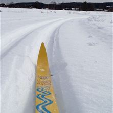 Långmyren cross-country tracks