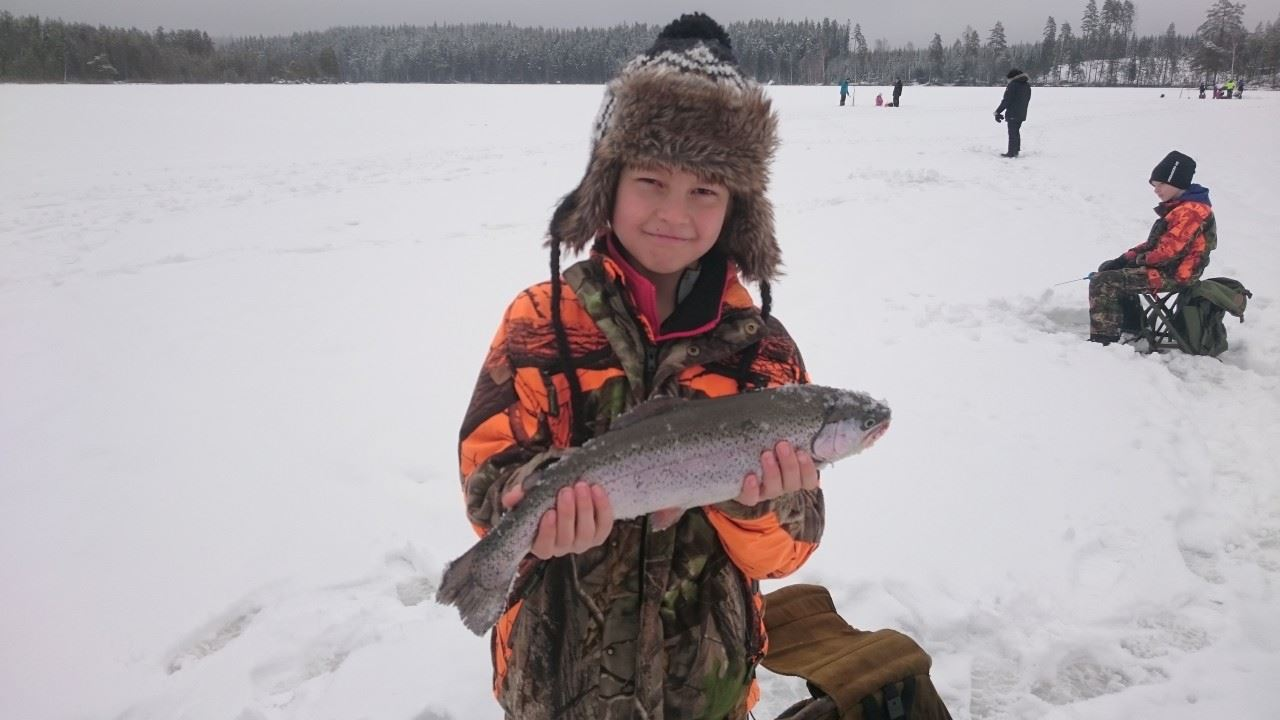 Fiskekort Stora Lövsjön Ädelfiske