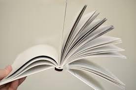 Boksignering & diktläsning