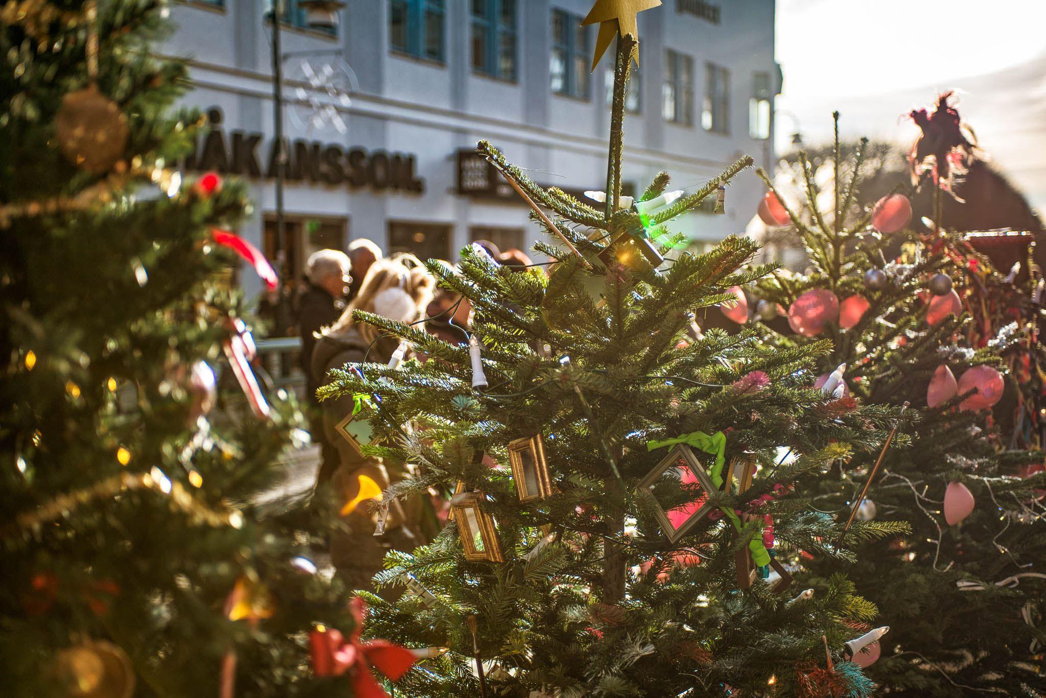 Grannaste Granen – Julgranstävling