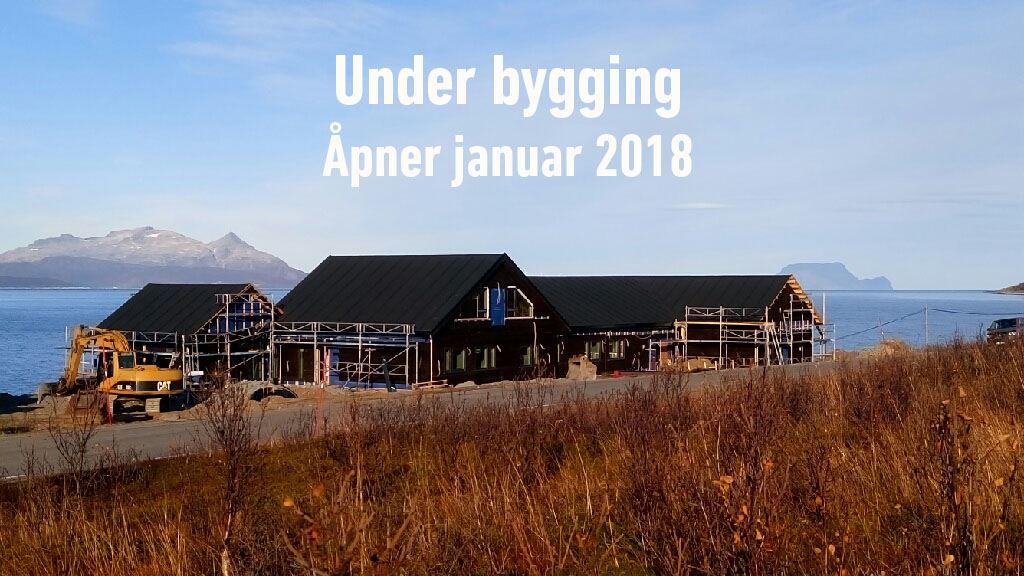 Aurora Safari i Lyngen - Lyngen Experience
