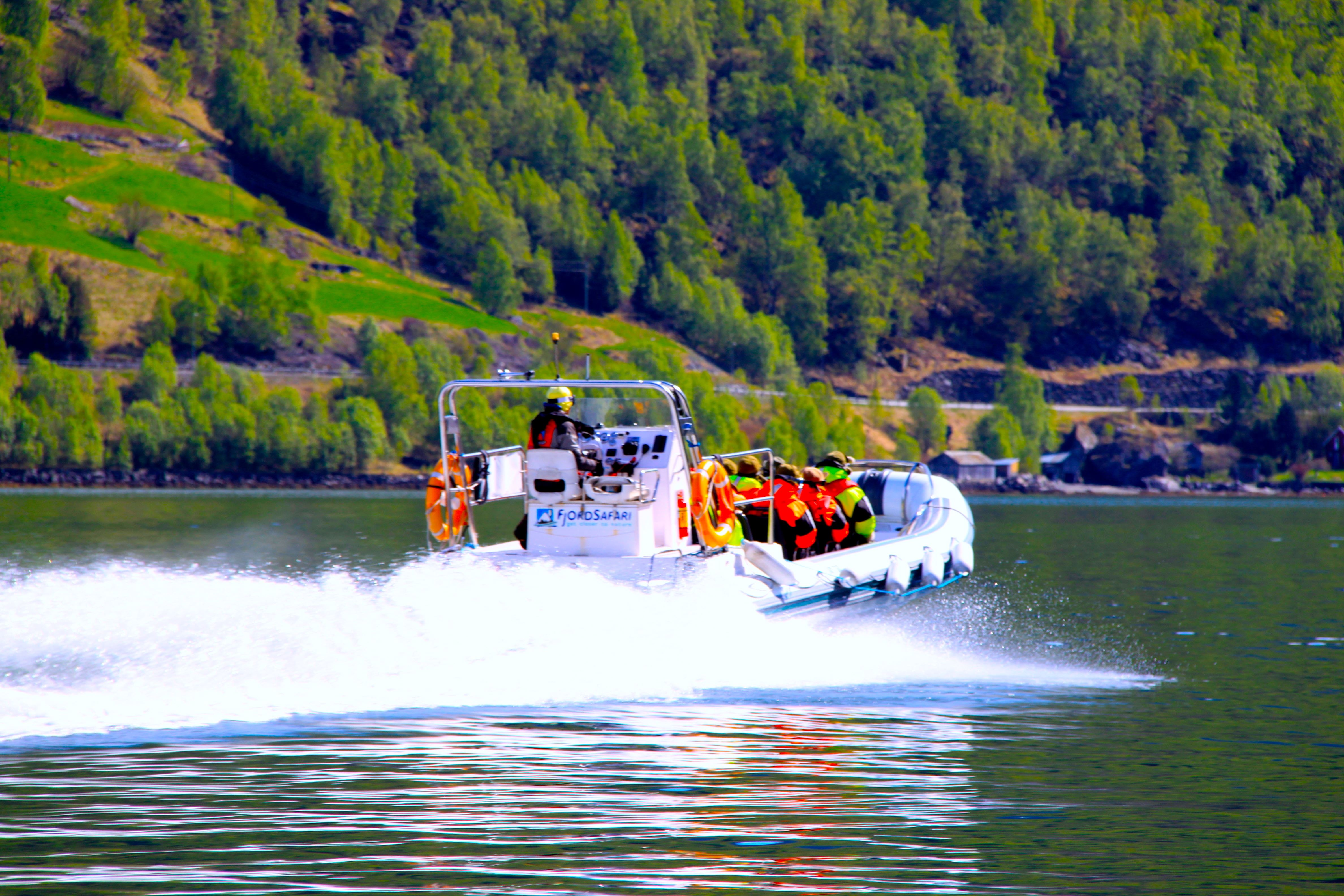 Eirik Østerli, Basic FjordSafari