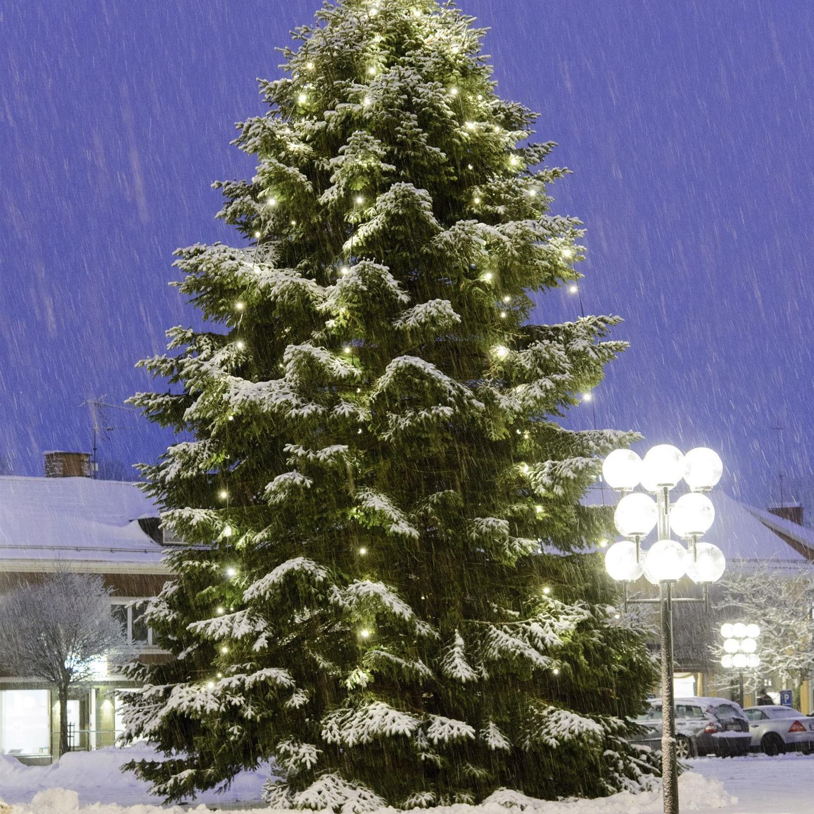 Jul i Sävsjö