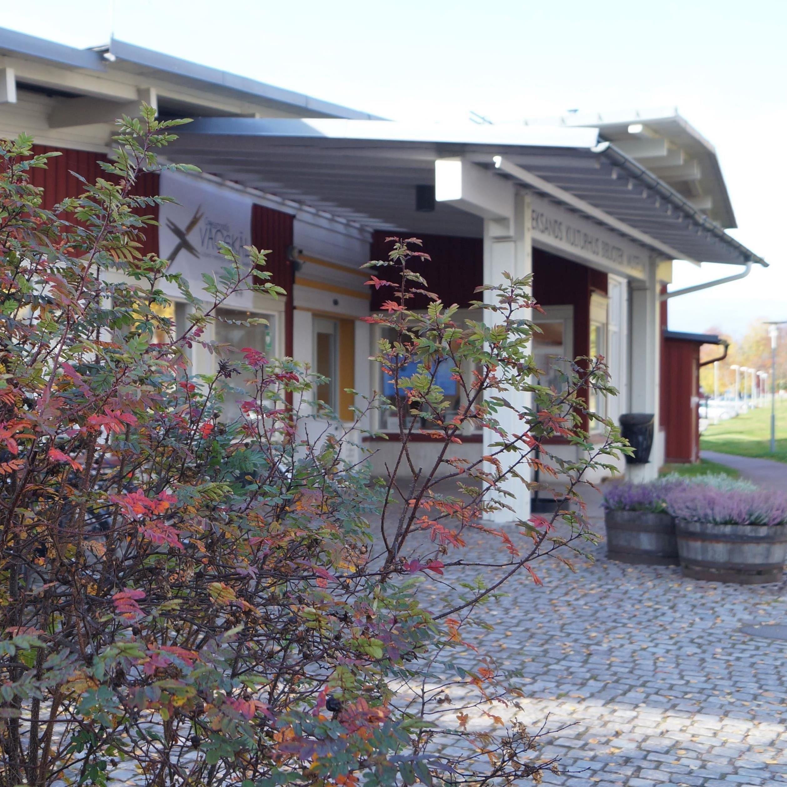 Ingela Sannesjö, Culture house museum (copy) (copy) (copy)