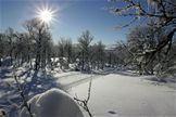Snömakaren AB