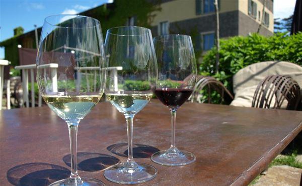 Vinprovningar med Italygross.se