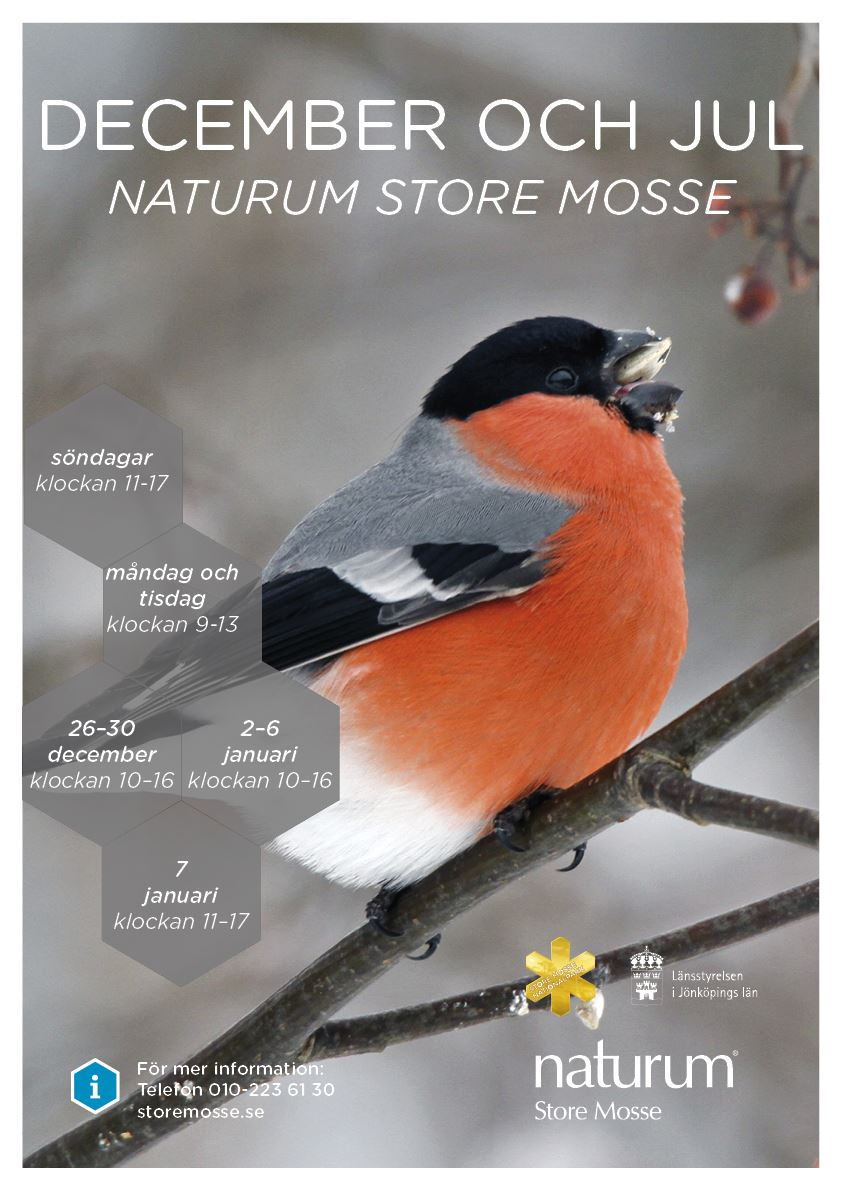 Julöppet  naturum Store Mosse