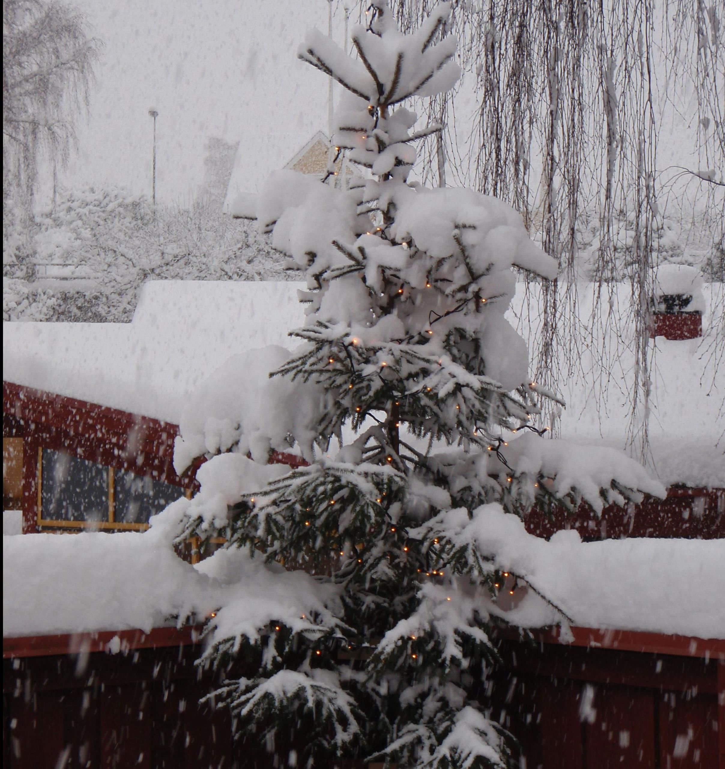 Christmas market in Mörrum