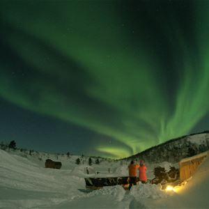 Nordlyset danser over himmelen i vintermørket