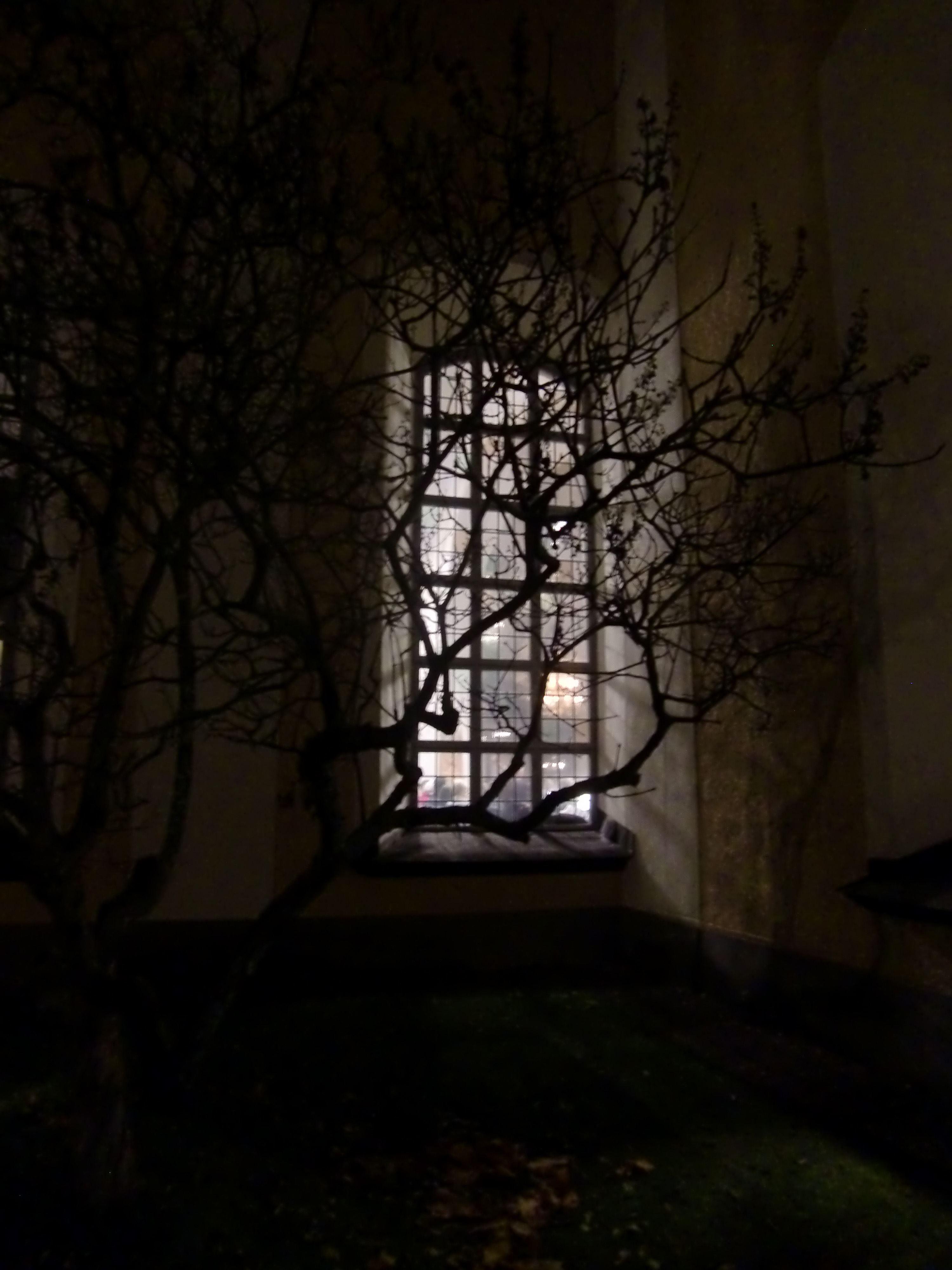 Visning av julutställningen -  Från mörker till ljus