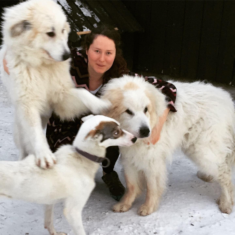 SPA dag med våre hunder