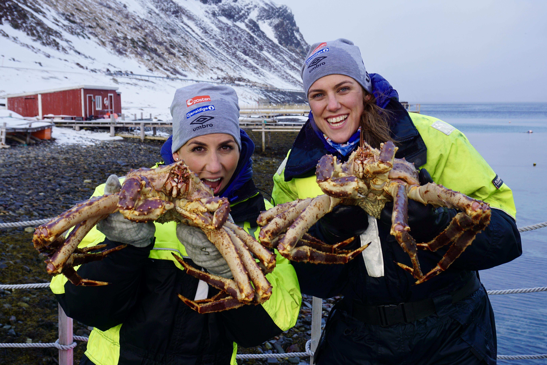 King Crab Safari at 71 ° North