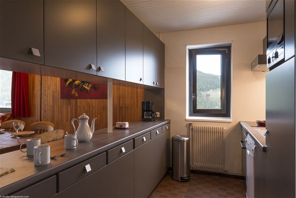 4 rooms, 6 people / OURSE BLEUE 801 (Mountain of charm)