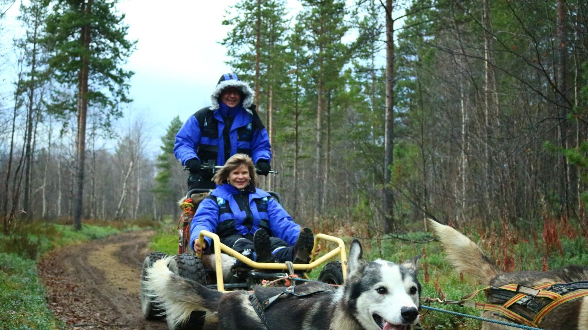 Wagon tour with huskies