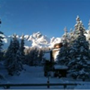 1 studio 4 people, ski-in ski-out / Domaine du Jardin Alpin 108B (Mountain of Charm)