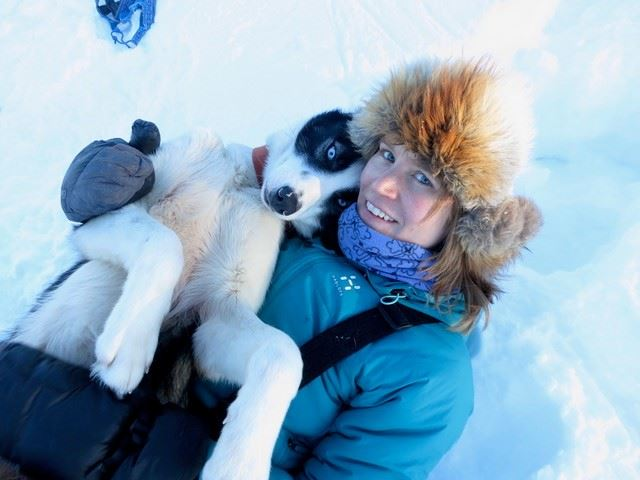 Bardu Husky Lodge,  © Bardu Husky Lodge, Experience dogsledding in Polar Park