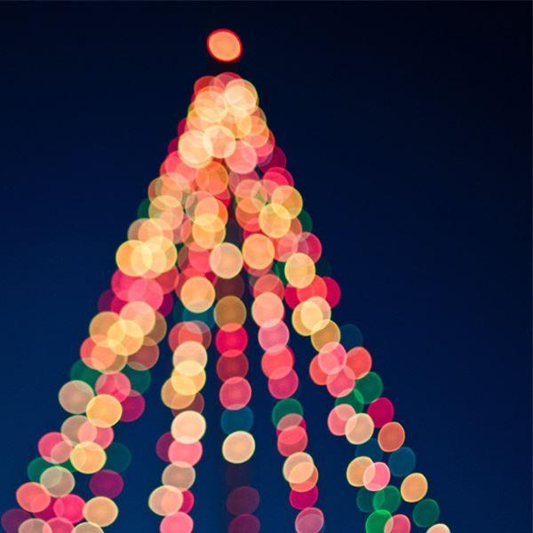 Julmarknadsresa till Tjolöholm