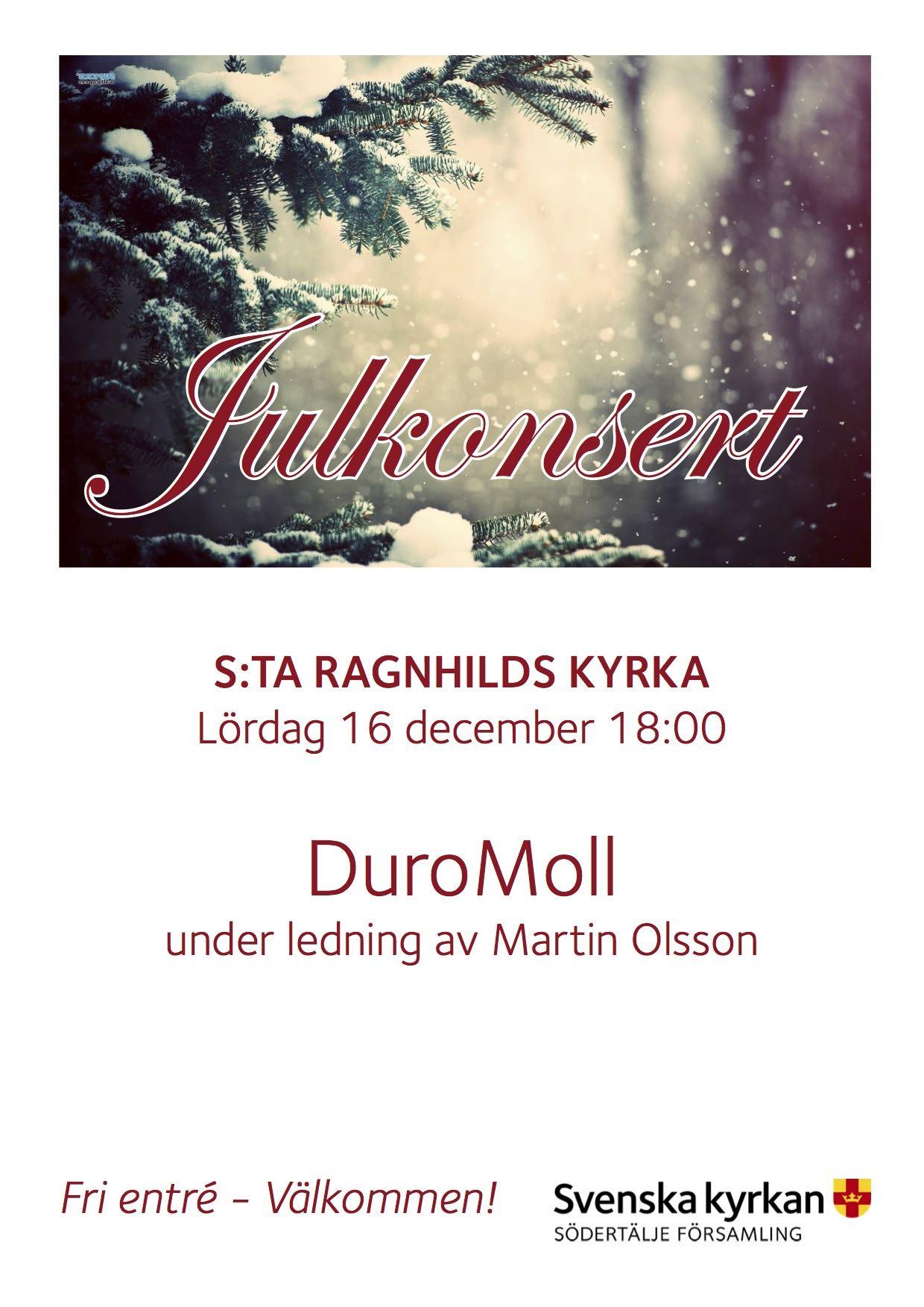 Julkonsert i S:ta Ragnhilds kyrka