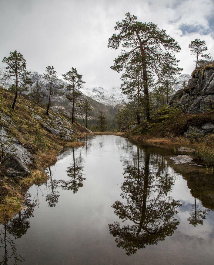 Helgeland Kraft, Besøk Øvre Forsland kraftanlegg