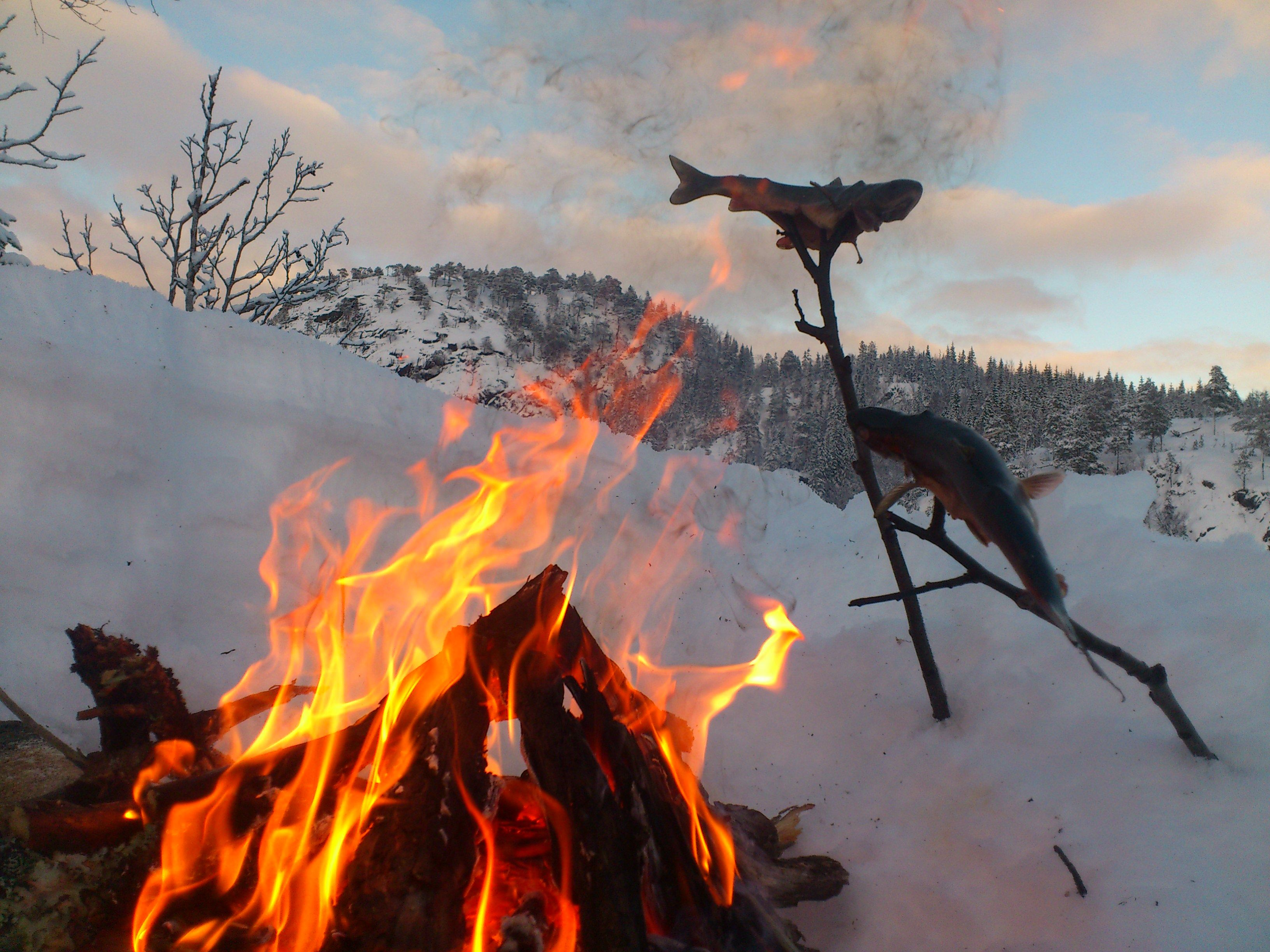 Plahte Eiendommer, Bålstemning, grilling av fisk