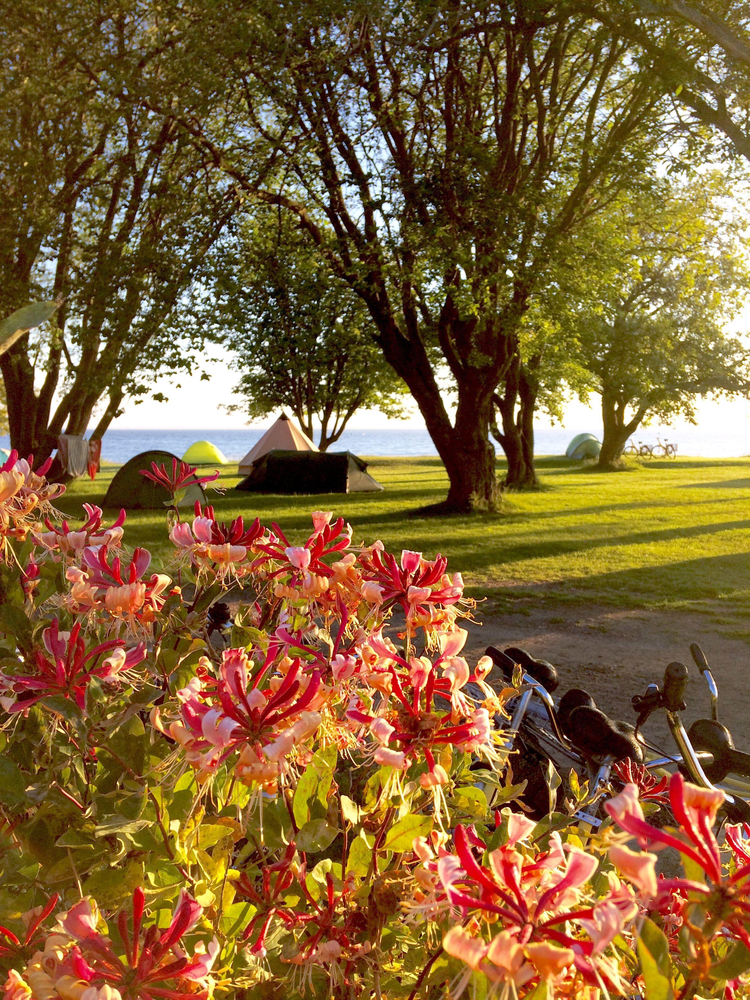 Camp Ven