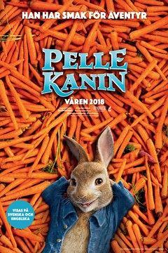 Kanin vilar på morötter