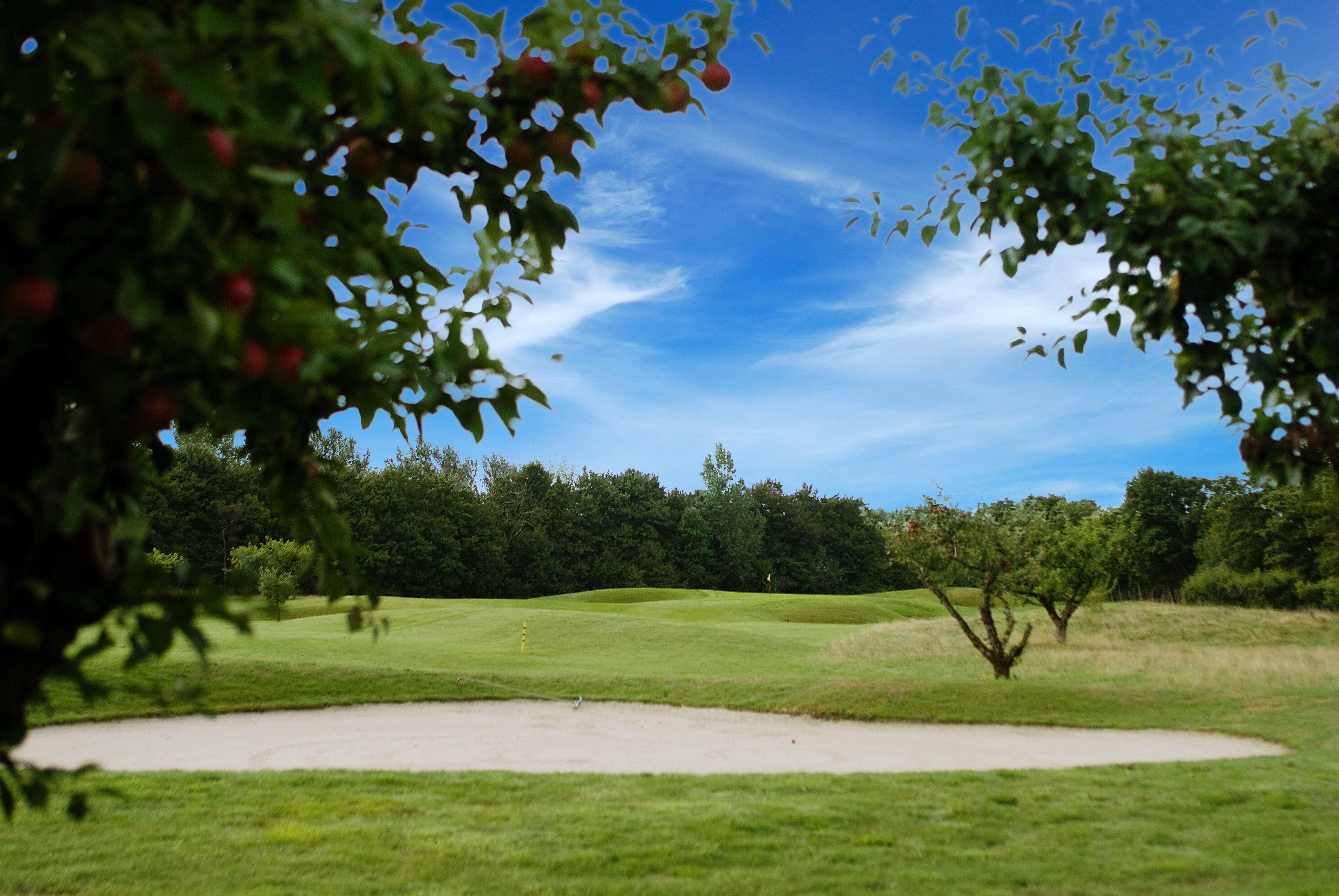 Abbekås Golfrestaurang & Hotell , Banan är en underbar hedbana, par 72, där de första nio hålen går mellan trädridåer i ett öppet landskap. De andra nio är mer kuperade och leds genom gamla äppelodlingar.