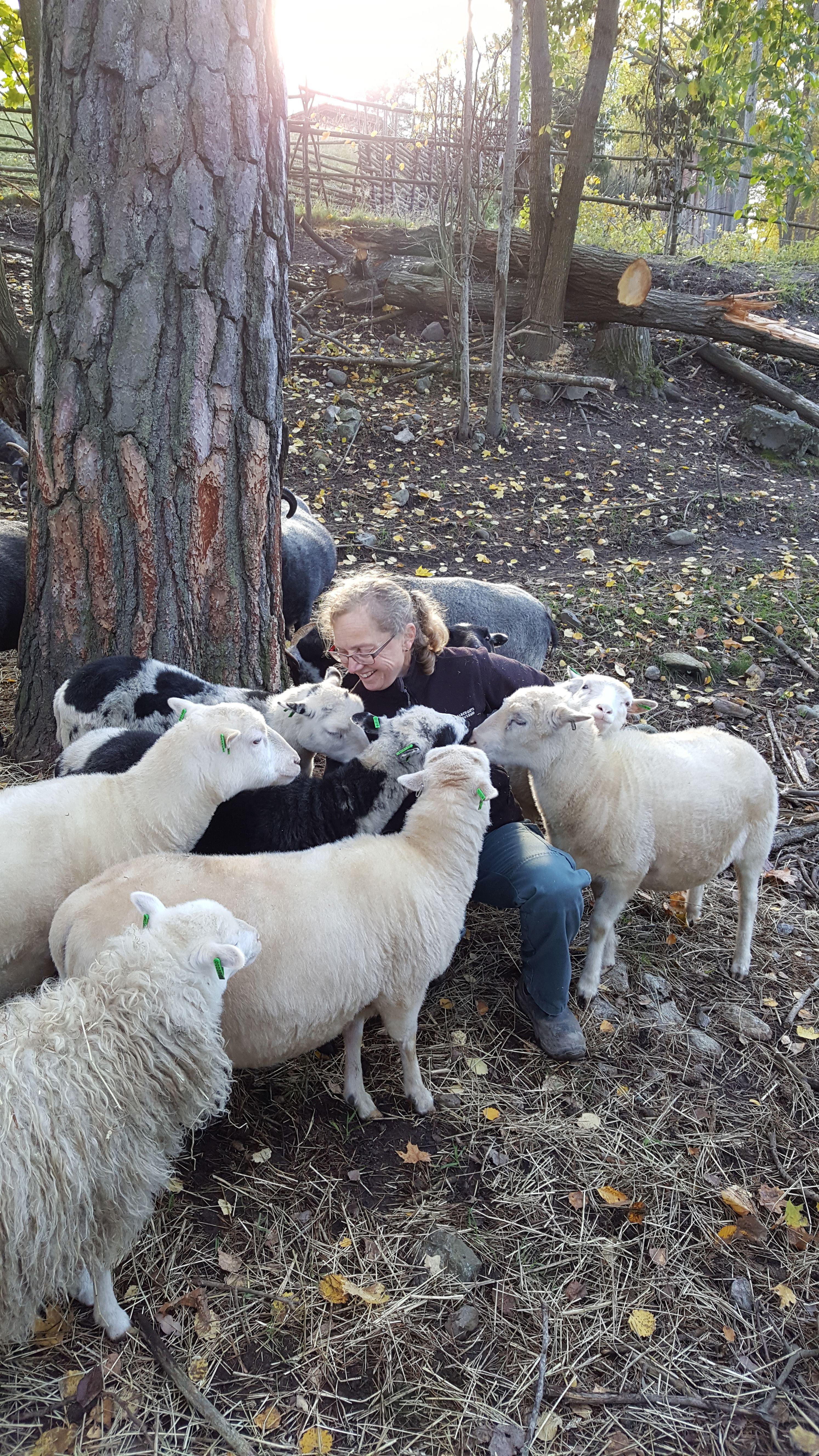 Djurskötare för en dag på sportlovet