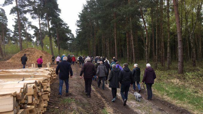 Bøtøskoven Natur- und Naturschutz