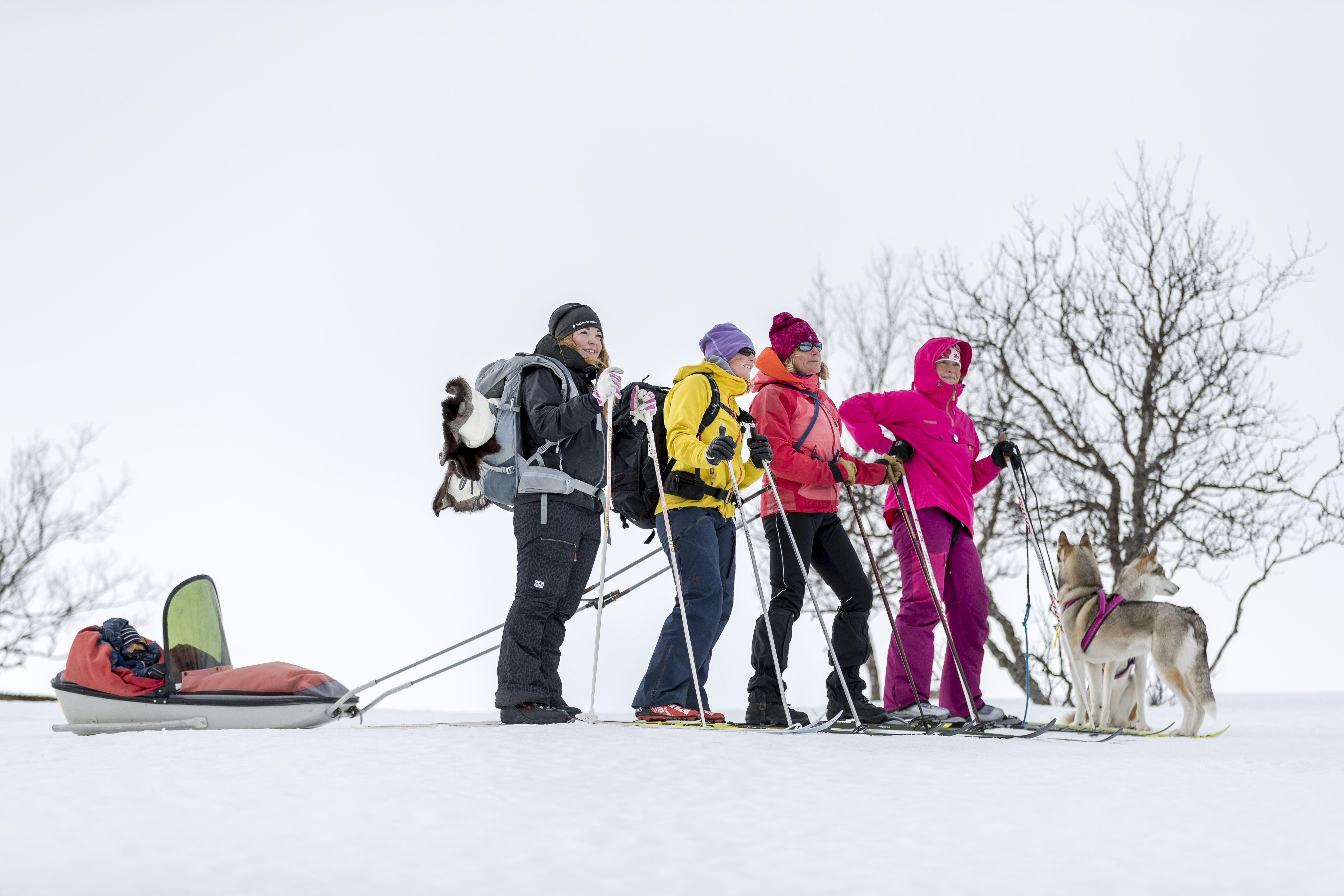 Guidebyrån, Tänndalen