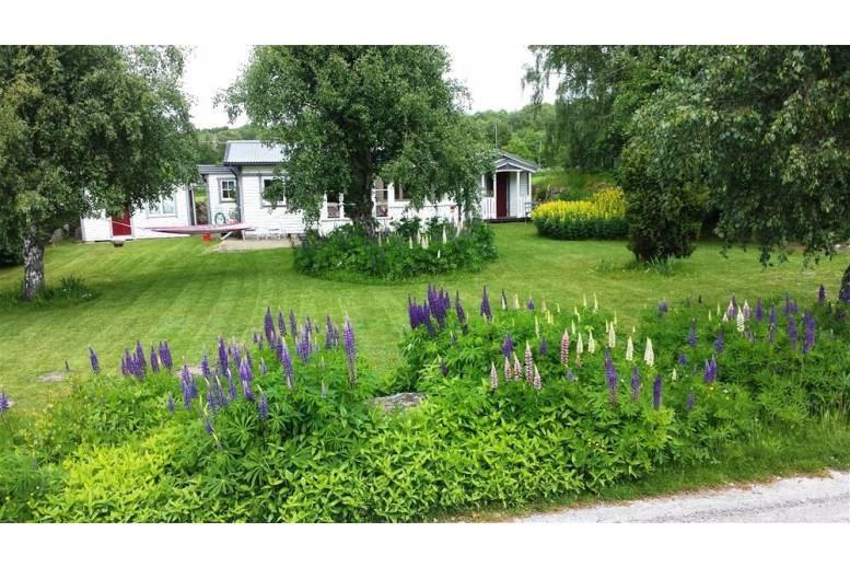 Sölvesborg - Cottage on large plot