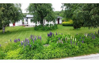 Sölvesborg - Cottage on large plot - 2515
