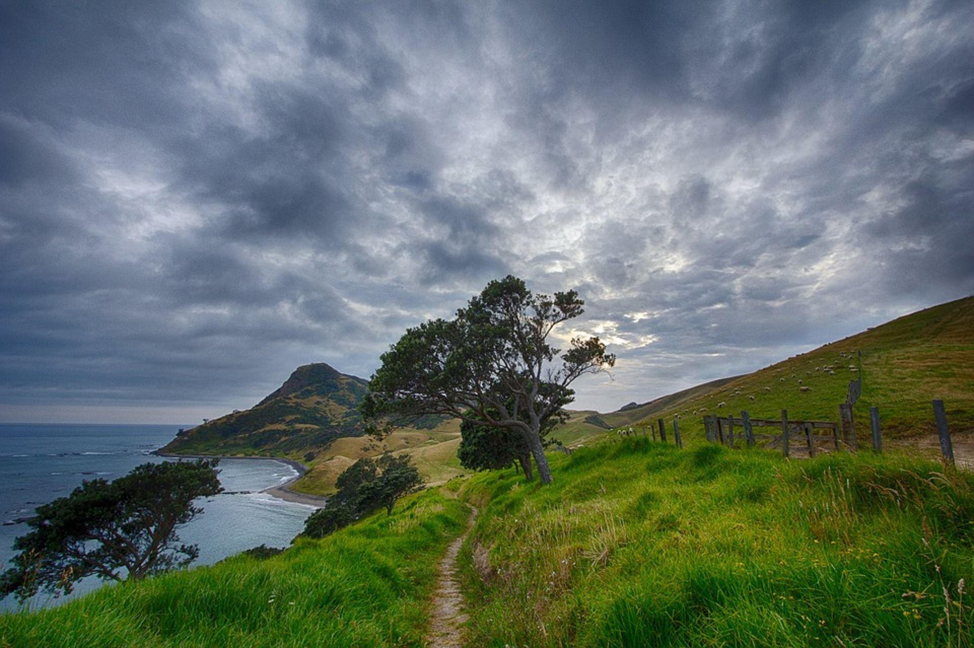 Föredrag: Nya Zeeland