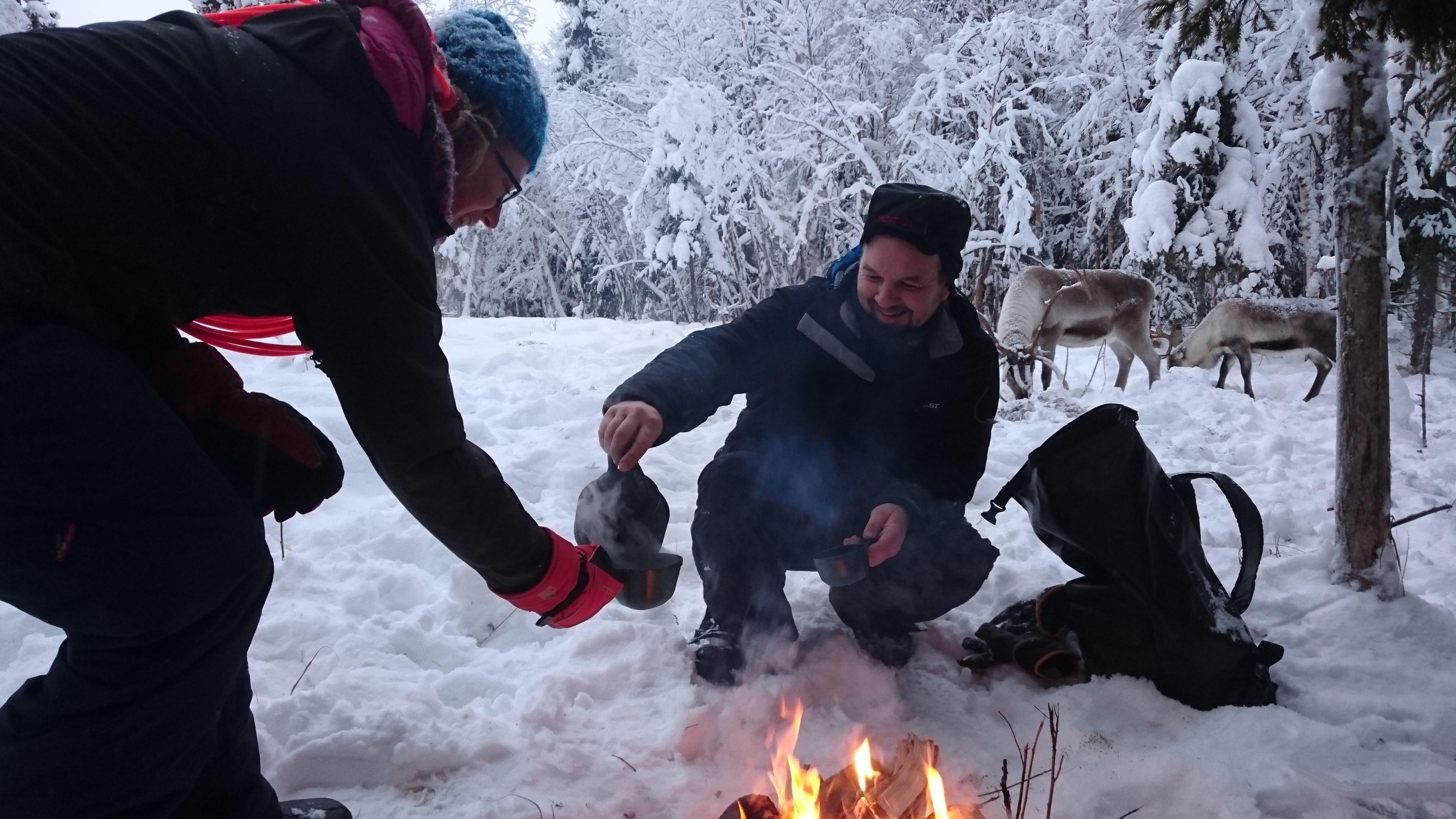 Träffa renarna i vinterhagen