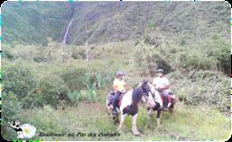 Discovering pandanas and waterfalls on horseback