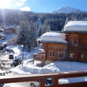 4 pièces, 8/9 personnes skis aux pieds / Grand bois A1132 (Montagne)