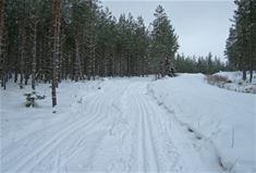 Bergebo Ski-maraton
