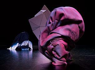 Teater / Dans: Cuttlefish