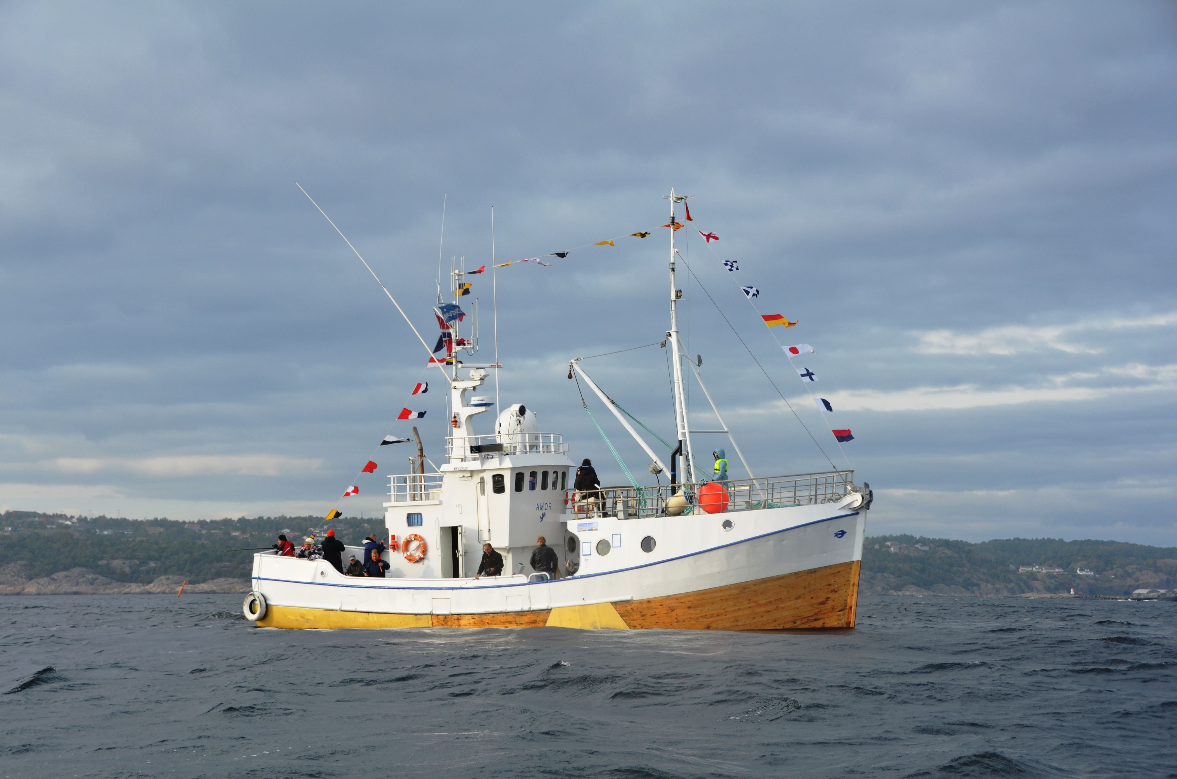 Fishing trips from Svolvaer with the MS AMOR