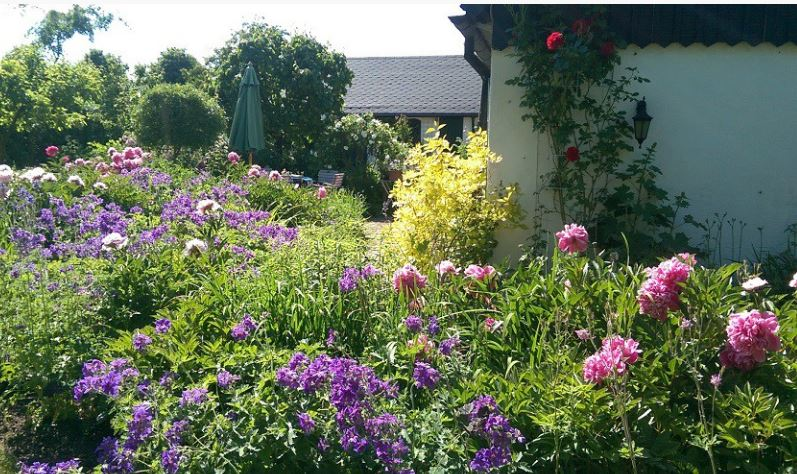 Open garden show