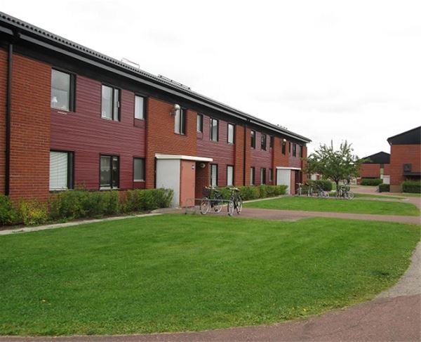 Vasaloppet. Private apartment M353 Yvradsvägen, Mora