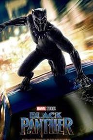 Bio - Black Panther