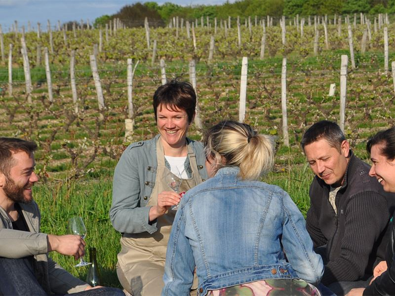 From vine to wine - 6 Loire wines and local food