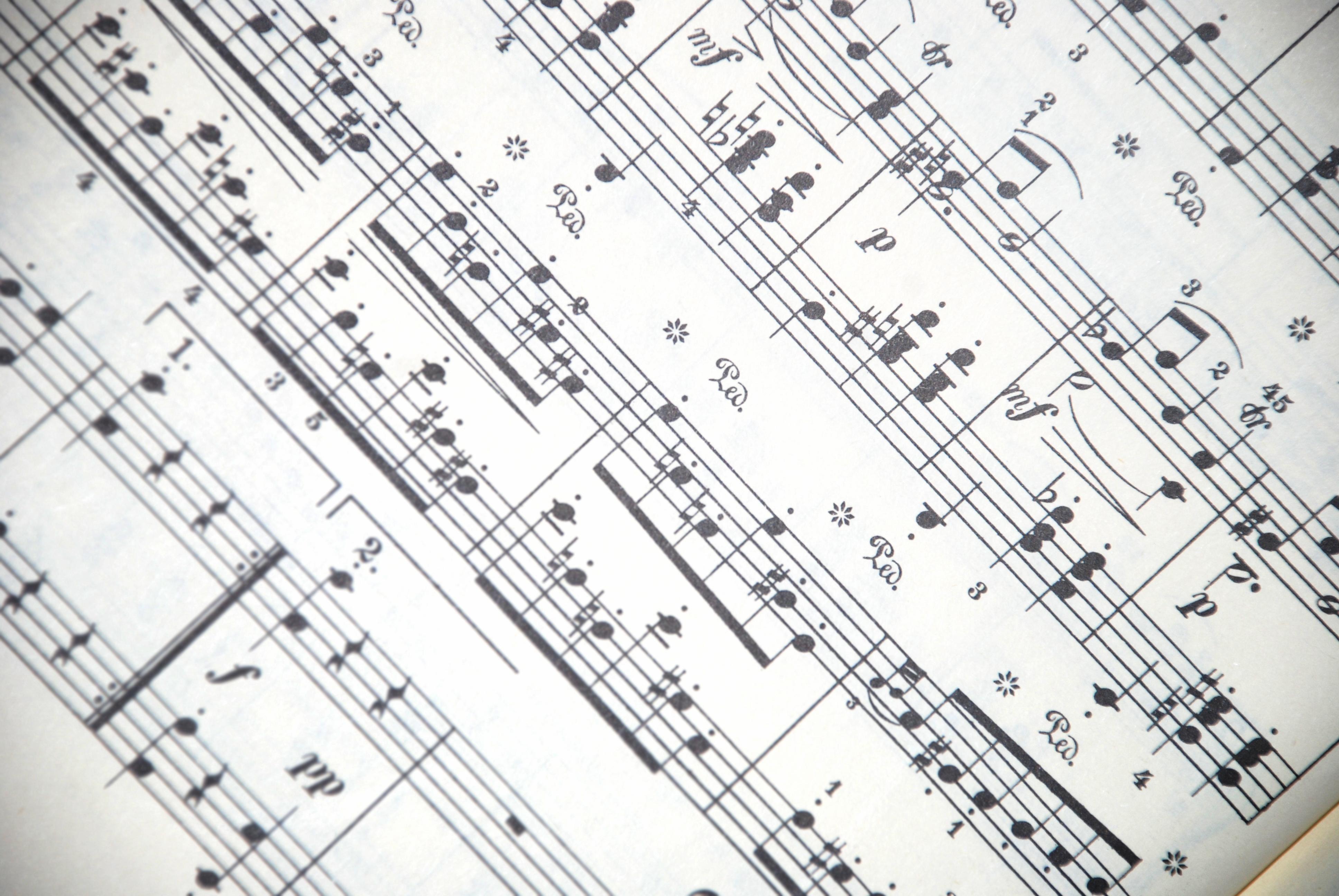Musik: Människan och skapelsen