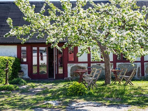 STF Brantevik Råkulle Hostel