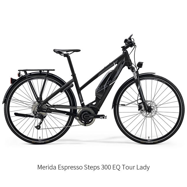 204. Electric Bike Rental