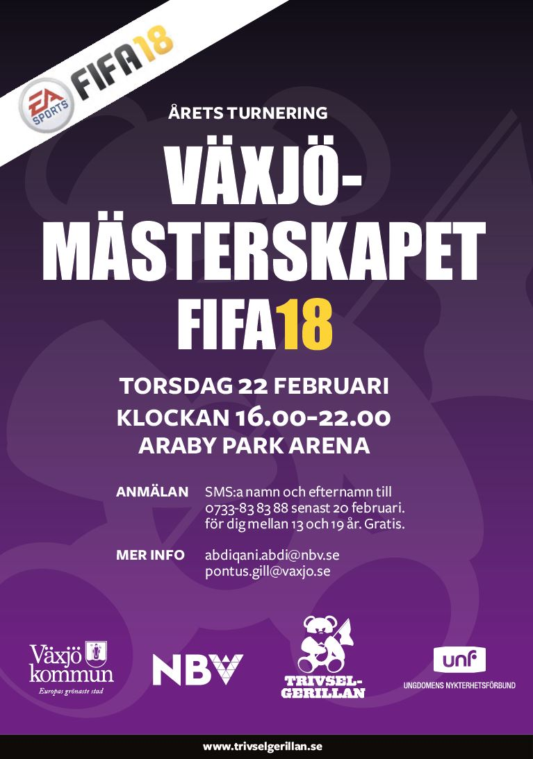 Växjö mästerskapet FIFA-18