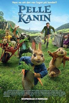 Gagnef bio - Pelle kanin