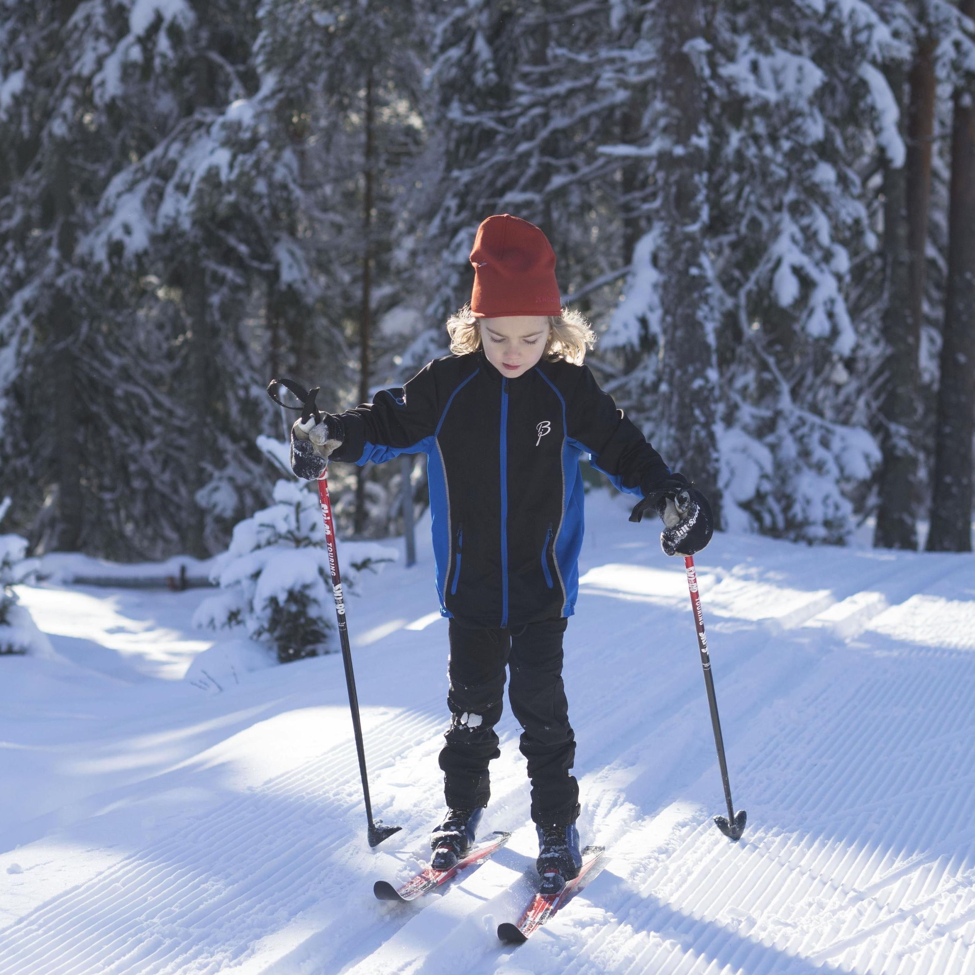 Skidans dag