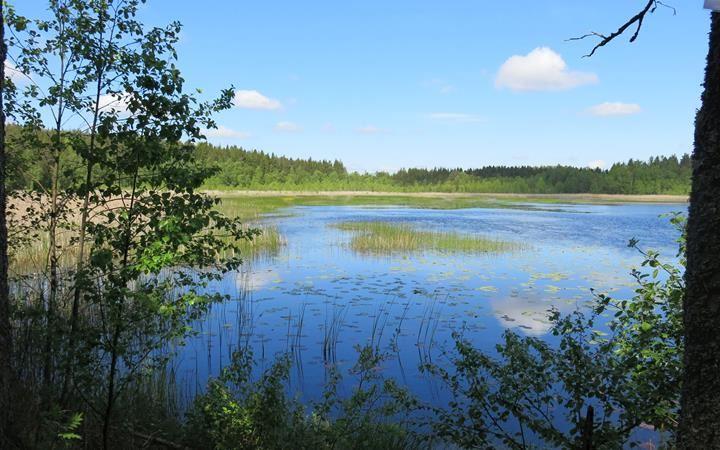 Natur- & kulturvandring vid Ormestorp och Nartorp